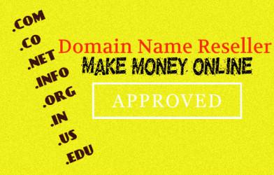 Domain Name Reseller