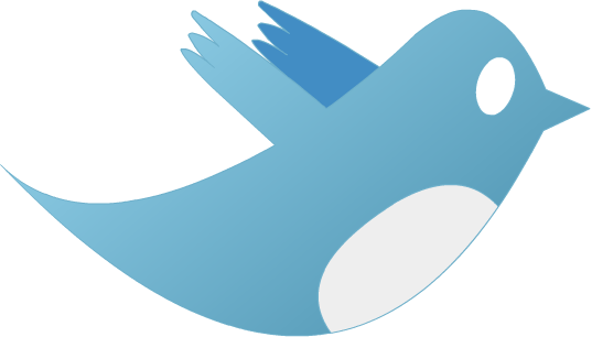 How To Start Twitter Marketing Campaign From Scratch